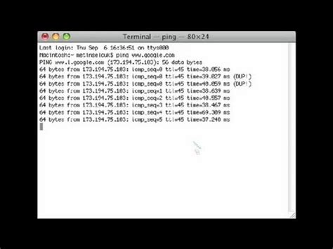 How to Ping Using the Terminal App on a Mac : Internet