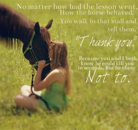 22 Awesome Horse Quotes and Sayings – WeNeedFun