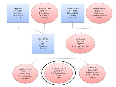 Genogram & Reflection (With images)   Reflective essay
