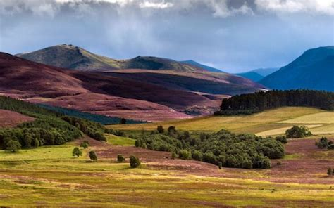 Why you should spend summer in the Cairngorms, the roof of