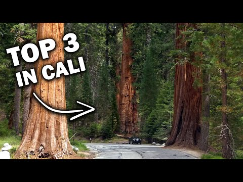 3 National Parks in 3 Days on the Majestic Mountain Loop