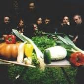 The Vegetable Orchestra — Free listening, videos, concerts